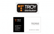 Troy - visual identification